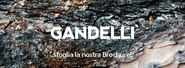 link brochure gandelli group ITA