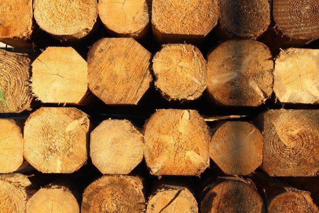 Wooden beams Gandelli Group