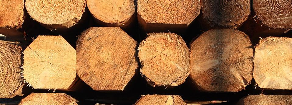 legno edilizia