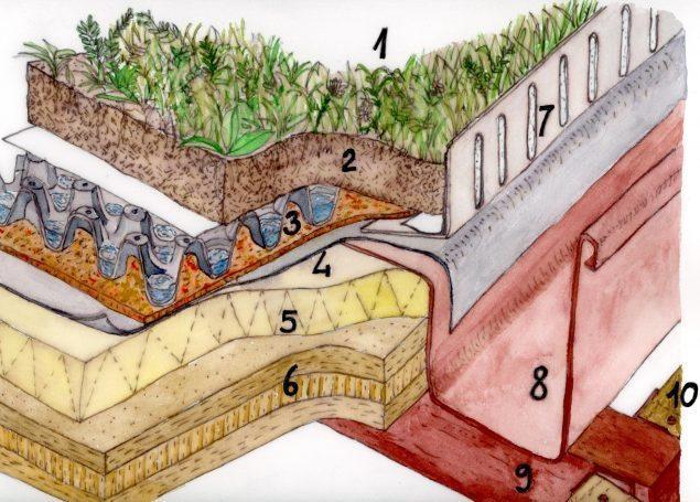 tetto-giardino-edificio-in-legno-scuola-pianezza