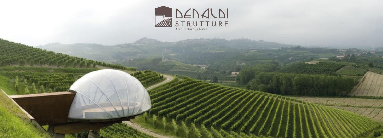 denaldi-strutture-in-legno-logo